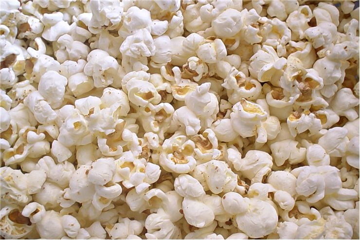 Picture Of Popcorn Grain